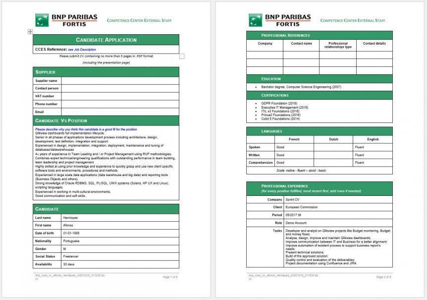 CCES CV template